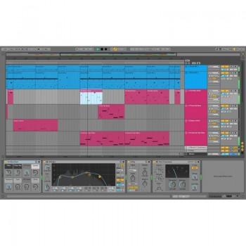 Ableton Live 10 + 11 Standard - Download