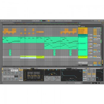 Ableton Live 10 + 11 Suite - Download